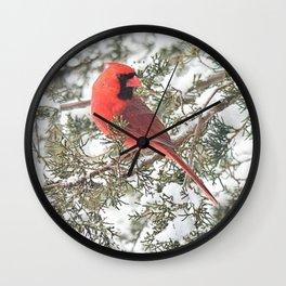 Cardinal on a Snowy Cedar Branch (v) Wall Clock