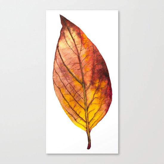 Autumn Leaf 03 Canvas Print