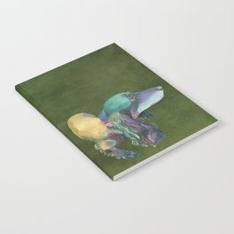 Longhaired Dachshund Notebook
