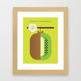 Fruit: Kiwifruit Framed Art Print