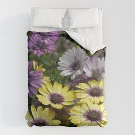 Yellow and Purple African Daisies Comforters
