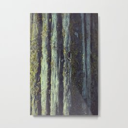Mossy tree bark Metal Print