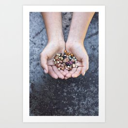 Food Jewels BEANS from old Swedish breeds Art Print