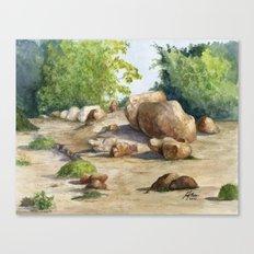 A Walk In the Arboretum Canvas Print