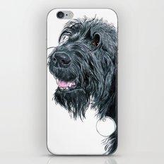 Smiling Black Labradoodle iPhone & iPod Skin