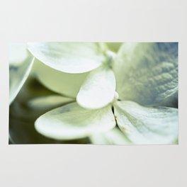Flower Series - Dream - 9 Rug