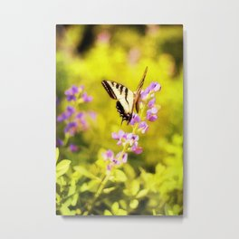 Those Summer Dreams Metal Print