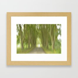 Abstract Trees Framed Art Print
