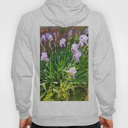 Purple Irises Hoody