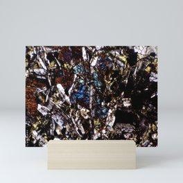 Pyroxene and Feldspar Mini Art Print