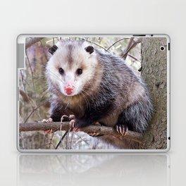 Possum Staredown Laptop & iPad Skin