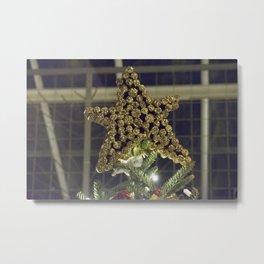 Longwood Gardens Christmas Series 96 Metal Print