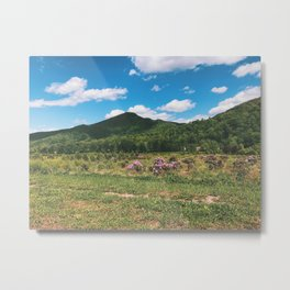 Countryside • Appalachian Trail Metal Print