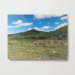 Countryside • Appalachian Trail Metal Print
