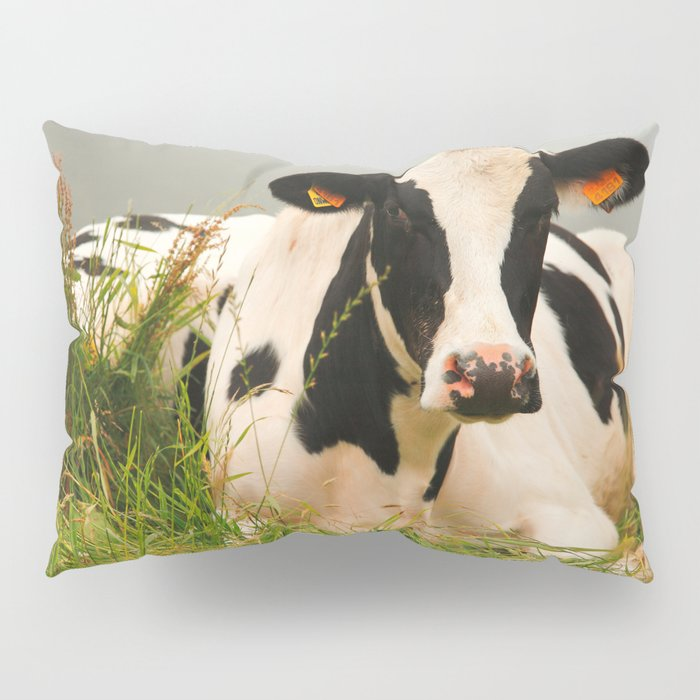 Holstein cow facing camera Pillow Sham