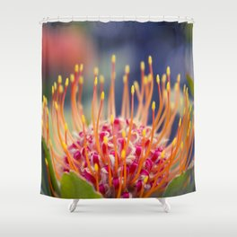 Tropical Sunburst - Leucospermum Pincushion Protea Flower Shower Curtain