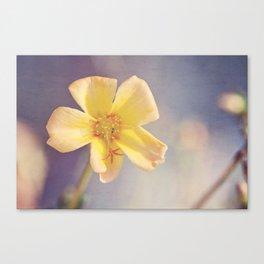 A Little Yellow Flower Canvas Print