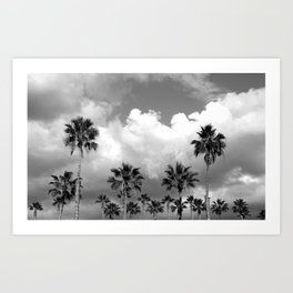 Palm Tree Noir #28 Art Print