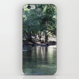 Tranquil Stream iPhone Skin