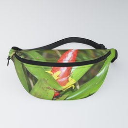 The Bromeliad (the air) plant in flower - El Yunque rainforest PR Fanny Pack