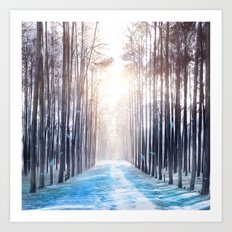 Feather Dance In Winter Art Print