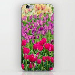 Fields of Color I, Woodburn Tulip Festival iPhone Skin