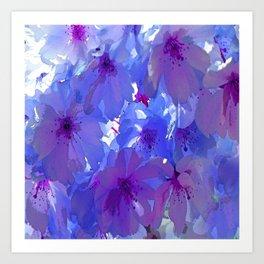Blue Cherry Blossoms Art Print