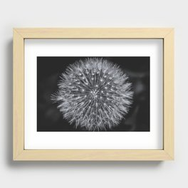 Dandelion Recessed Framed Print