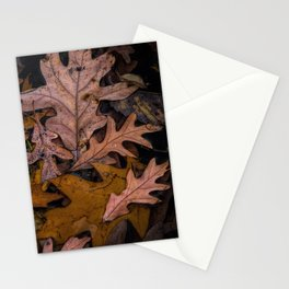 Patterns of Leaves on Wabasis Lake Stationery Cards