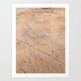 sea stone Art Print