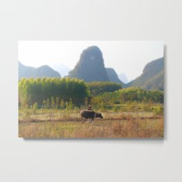 Rural China Metal Print