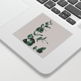 Eucalyptus Sticker