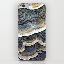 Turkey Tail Fungi iPhone Skin