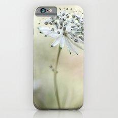 Astrantia Slim Case iPhone 6s