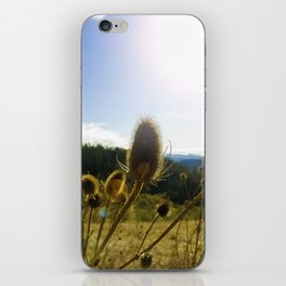 Colorful Winter Day iPhone Skin