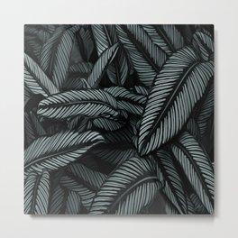 Night Tropic 534 Metal Print
