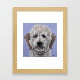 Dog Art, Golden-Doodle, Labradoodle Painting Framed Art Print