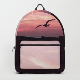the dive Backpack