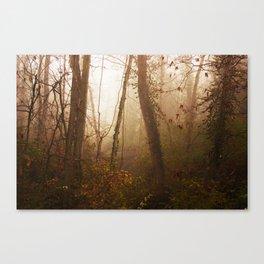 more light Canvas Print