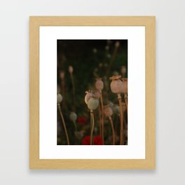Pastel Wix Framed Art Print
