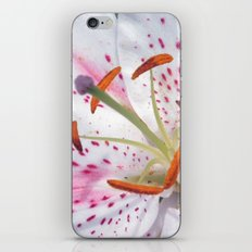 Summer Lily iPhone & iPod Skin