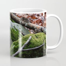 Moss Covered Rocks in Fall Forest Coffee Mug