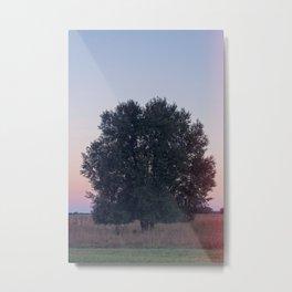 Dawn Pt. 1 Metal Print