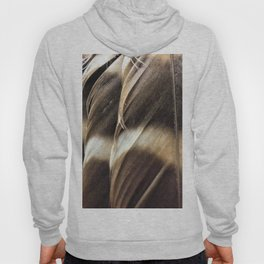 Barred Owl Feathers Hoody