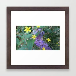 Weeds and Budlia  Framed Art Print