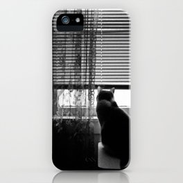 Window cat iPhone Case