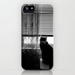 Window cat iPhone Case