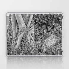 Strangler fig and boulder in the rain forest Laptop & iPad Skin