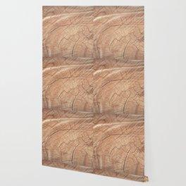 fractures Wallpaper