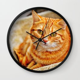 Cute red cat Wall Clock